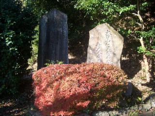 石碑紅葉.png