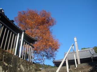 階段より.png
